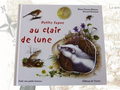 """Livre pour enfants """"petite fugue au clair de lune"""""""
