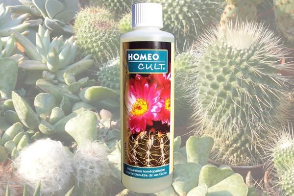 HomeoCult® 250 ml - cactus