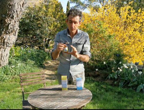 Traiter votre jardin avec les huiles essentielles