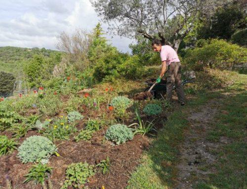 Les jardiniers au fil des saisons Mai 2020