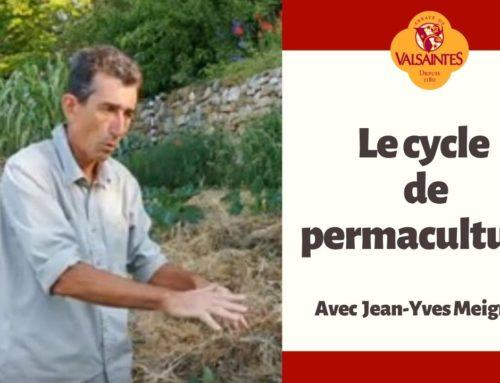 Vidéo : le cycle de permaculture