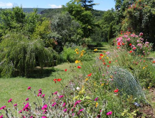 Ouverture du jardin à la visite à partir du 20 mars