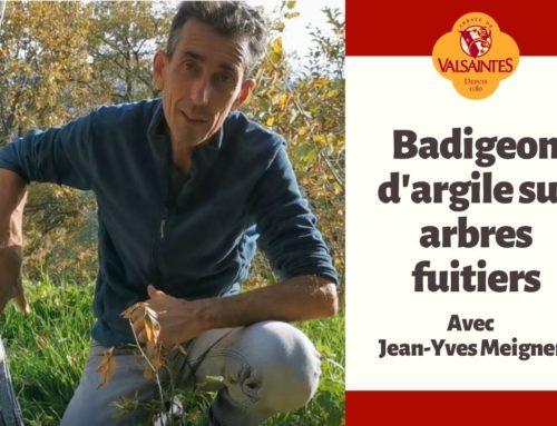 Vidéo : Badigeon d'argile sur arbres fruitiers