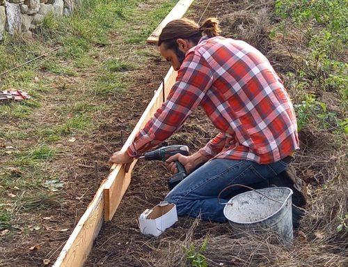 Les jardiniers au fil des saisons Novembre 2020