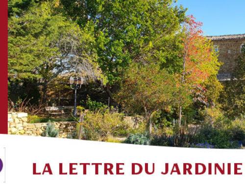 Jardin de l'abbaye de Valsaintes – La lettre du jardinier Janvier 2021