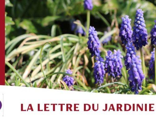 Jardin de l'abbaye de Valsaintes – La lettre du jardinier Avril 2021