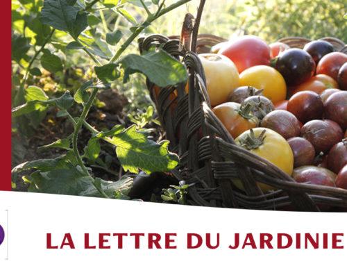 Jardin de l'abbaye de Valsaintes – La lettre du jardinier Août 2021