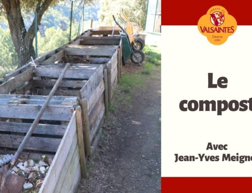 Vidéo : Le compost